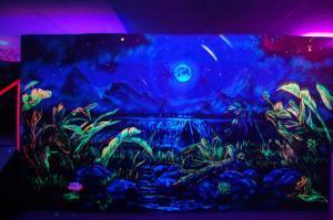 Фото Флуоресцентная краска и пигменты, светятся под воздействием УФ источника Флуоресцентная краска для экстерьера Эко