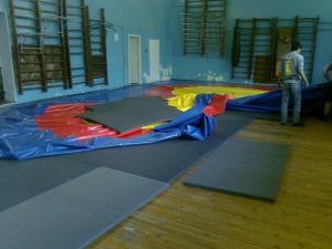 Фото Маты спортивные, борцовские - ППЭ (пенополиэтилен) Спортивный (гимнастический) мат 1500х1000х20 мм