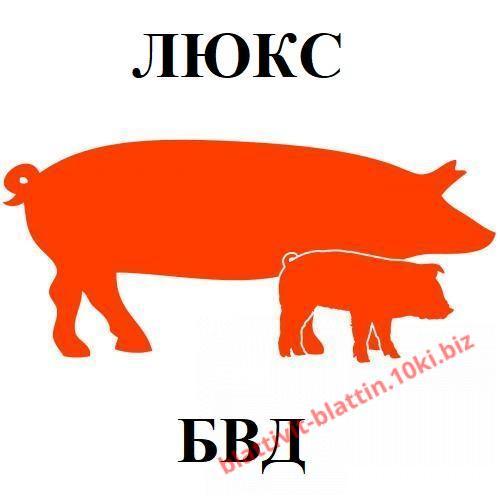 Фото  КРЕМИКС Бмвд Премикс Комбикорм Сухое Молоко , БВД для свиней ЛЮКС БВД КМ СВ-10% для свиней (от 65 кг) Люкс