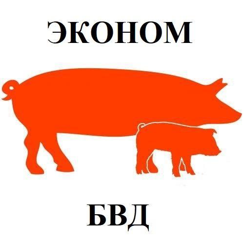 БВД КМ СВ-10% для свиней (от 65 кг) Эконом