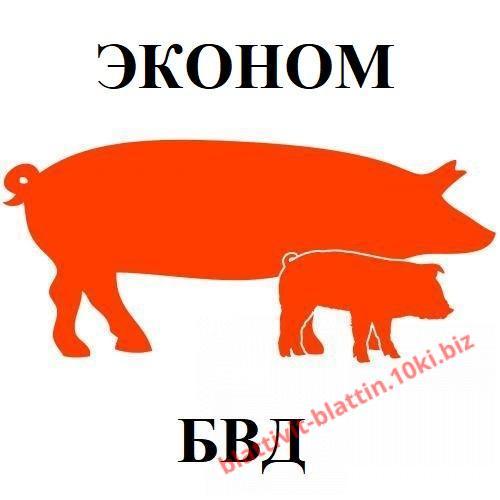 Фото  КРЕМИКС Бмвд Премикс Комбикорм Сухое Молоко , БВД для свиней ЭКОНОМ БВД КМ СВ-10% для свиней (от 65 кг) Эконом