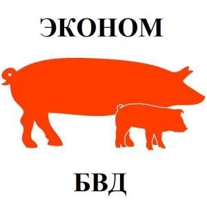 БВД КМ СВ-25% для поросят (15-35 кг) Эконом