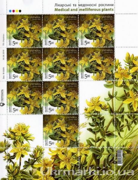 2018 № 1658 почтовый марочный лист Лекарственные и медоносные растения Зверобой пятнистый