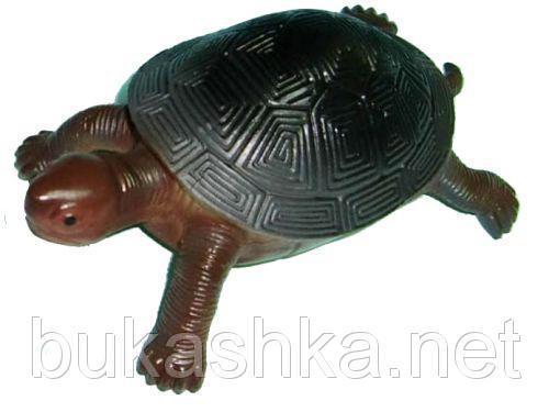 Резиновая черепаха-пищалка
