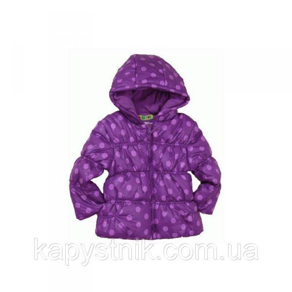 Куртка демисезонная дутая для девочки  р.86-104 ТМ PIDILIDI (Чехия)