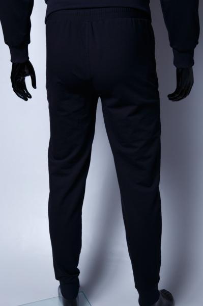 Спортивные штаны мужские Barbarian 379965-3 синие