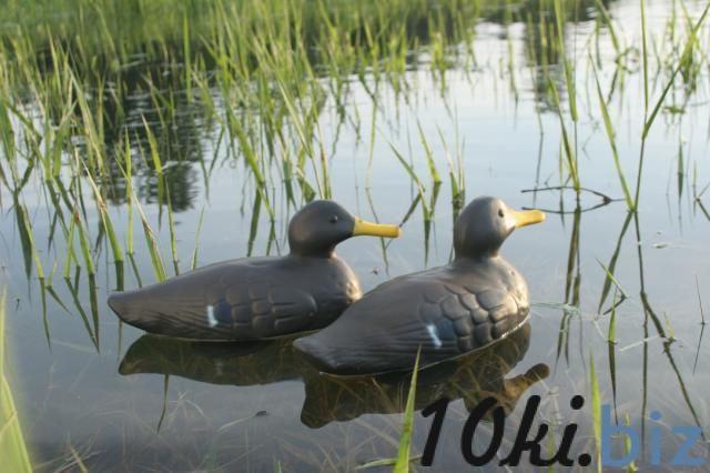 Утка-кряква подсадная серая (резина) Чучела для охоты в Украине