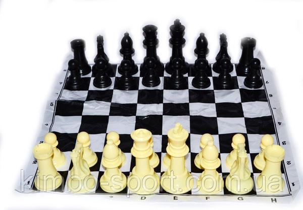 Фигуры шахматные, пластиковые, без утяжелителя, большие.