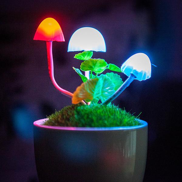 Светильник-ночник Аватар Грибы на камне