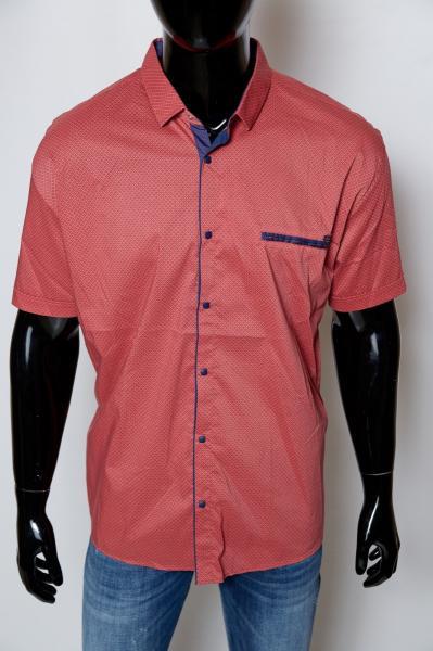 Рубашка мужская с коротким рукавом Amato 37133_1 батал коралл