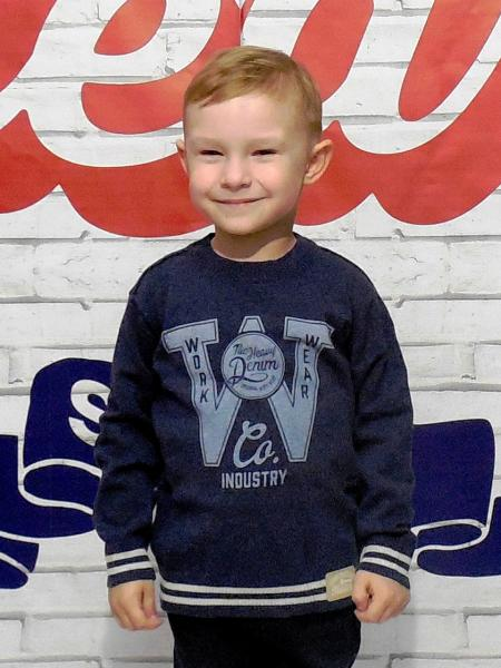 Кофта для мальчика Бренд Fox Израиль