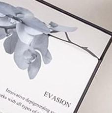 Фото Професcиональная косметика для домашнего ухода, Evasion  Сет Depegmentator R+M Evasion Pur Blance (3 ml + 3 ml)