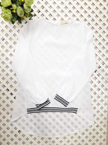 Спортивная модная блузка с шифоновим задом 140-164 см
