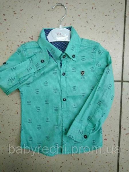 """Детская красивая рубашка """"Cucci"""" для мальчика"""