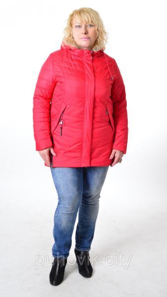 Демисезонная куртка Mishele 535 - Большие размеры