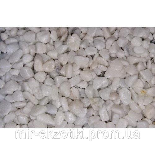 Грунт Collar Белая Галька 6-8 мм