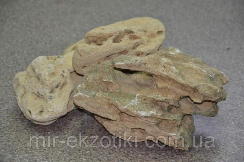 Камни для аквариума Ракушняк