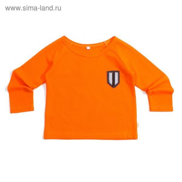 """Футболка для мальчика """"Dandy"""" с длинным рукавом, рост 110 см, цвет оранжевый Фт-145А"""