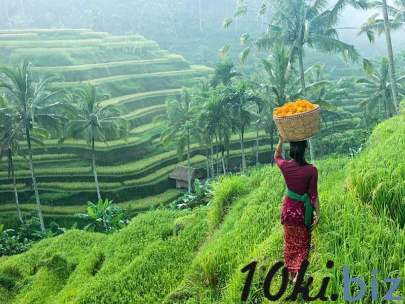 Видеогид - Бали  ? купить в Кишиневе - Туристические услуги