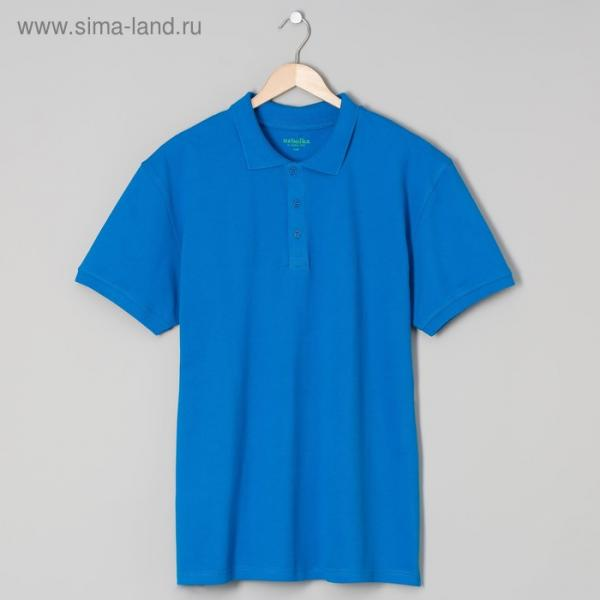 Футболка поло мужская арт.PM0110301031StandartL, цвет синий, р-р 50-52 (XL)