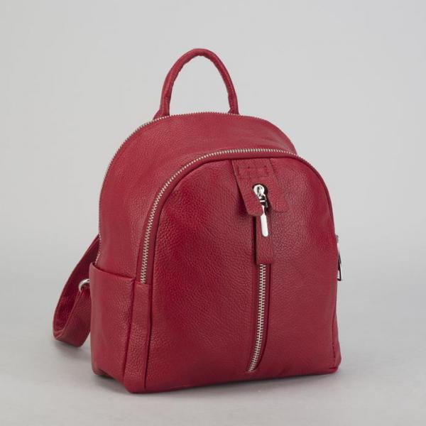 Рюкзак молодёжный, 2 отдела на молниях, 4 наружных кармана, цвет красный