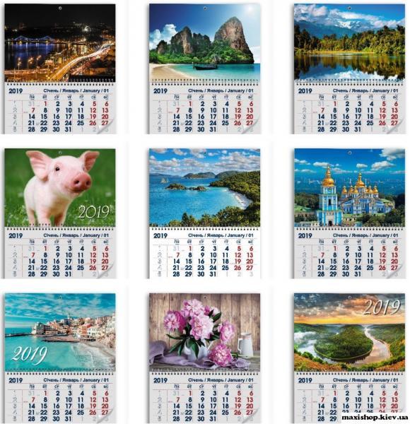 Календарь квартальный 2019 (Символ года )