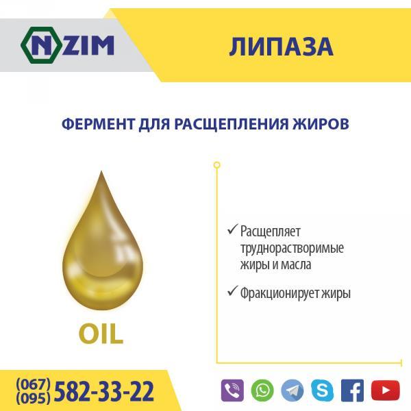 Липаза ENZIM - Фермент для расщепления жира