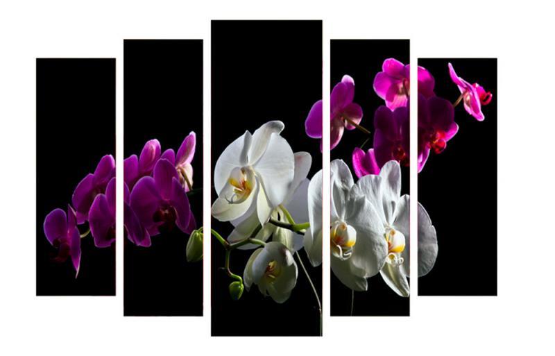 Модульная картина Декор Карпаты 120х80 см Орхидеи (M5-c20)