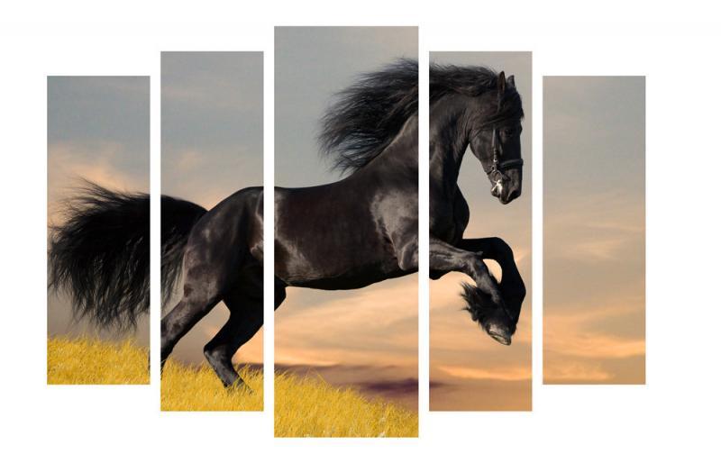 Модульная картина Декор Карпаты 120х80 см Черный конь (M5-z223)