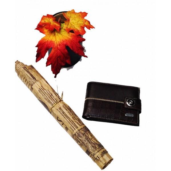 Фото  Мужской кошелек маленький Dream с зажимом Артикул 6071 коричневый