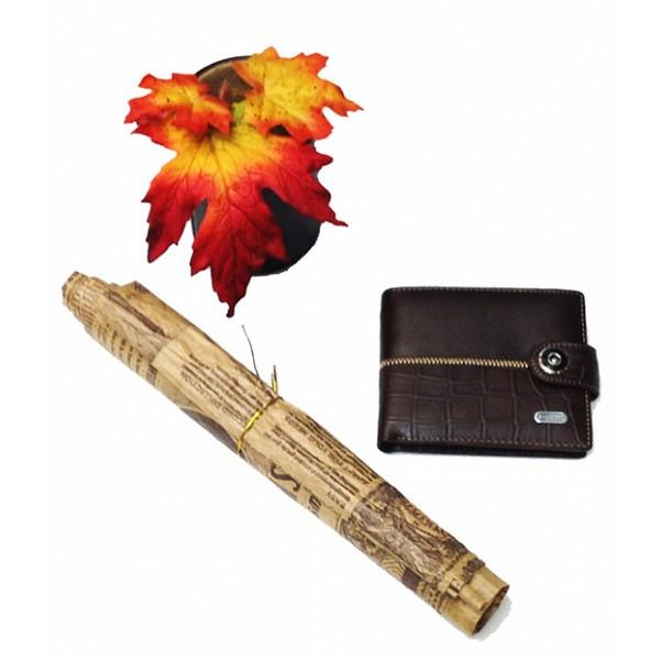 Фото  Мужской кошелек средний Dream с зажимом  Артикул 6066 коричневый