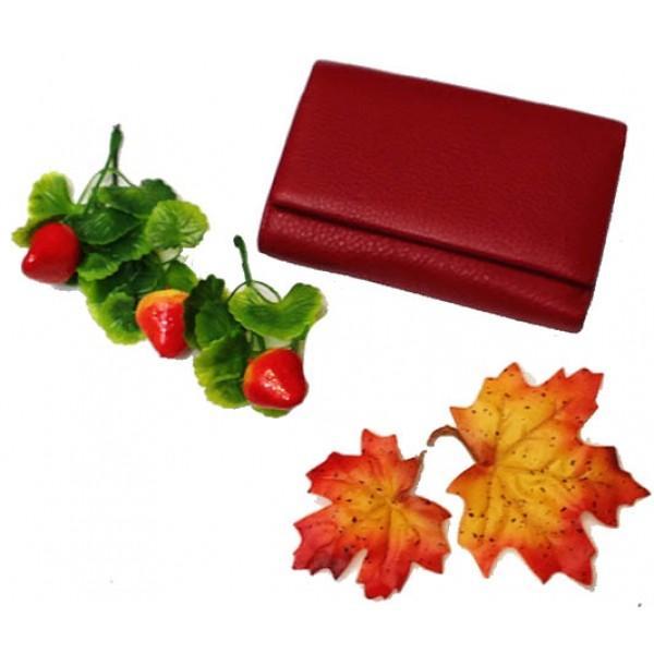 Женский средний кошелек Canevo Артикул PJ84-8830 красный
