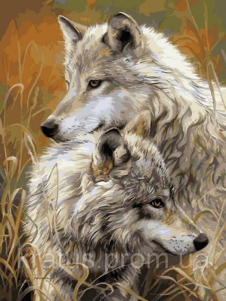 """VK 034 """"Степные волки"""" Роспись по номерам на холсте 40x30см"""