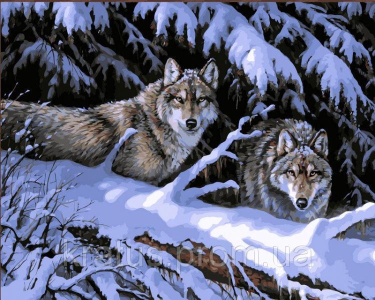 """VP 121 """"Волки в лесу"""" Картина по номерам на холсте 40х50см"""