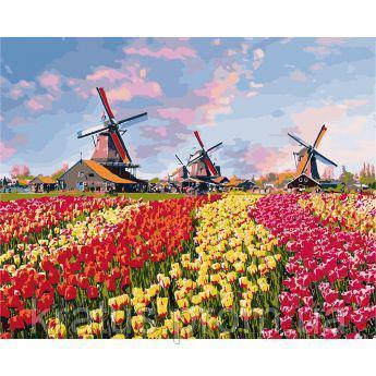 """KHO 2224 """"Красочные тюльпаны Голландии"""" Роспись по номерам на холсте (без коробки) 50х40см"""