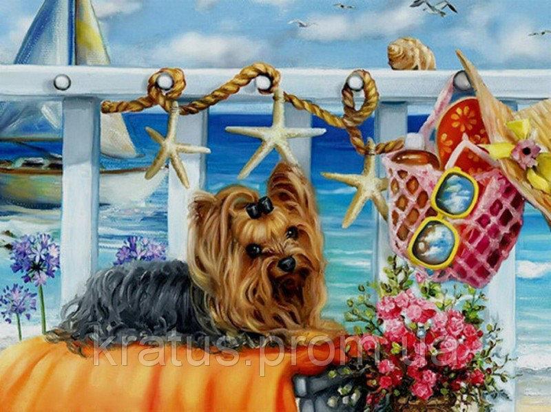 "KGX 21473 ""Йоркширский терьер на пляже"" Картина по номерам на холсте 40х50см"
