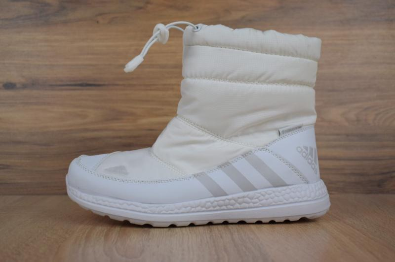 Adidas Winter White (36-41)