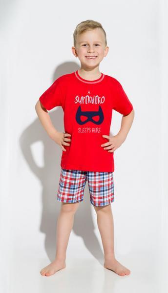 Пижама детская для мальчиков PIŻAMA TARO 943 DAMIAN SS18_conf