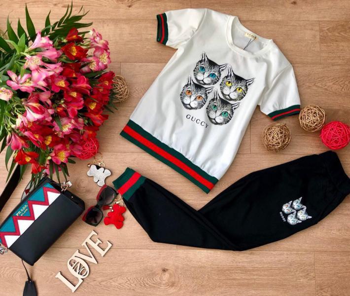 Фото Одежда женская, Костюмы Женский трикотажный костюм Cucci.