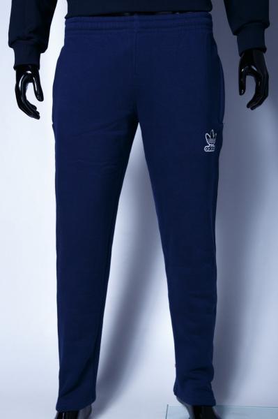Спортивные штаны мужские утепленные Ads 9920 синие