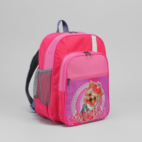 Рюкзак школьный на молнии, 2 отдела, 3 наружных кармана, розово-фиолетовый