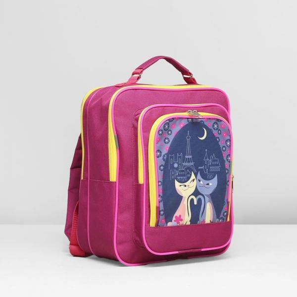 Рюкзак школьный, 2 отдела на молниях, 2 наружных кармана, цвет малиновый