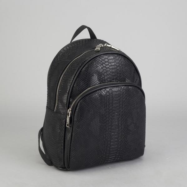 Рюкзак школьный, отдел на молнии, наружный карман, эргономичная спинка, цвет чёрный