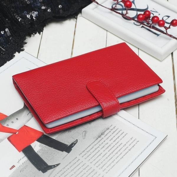 Визитница, 3 ряда, 32 листа, для карт, цвет красный