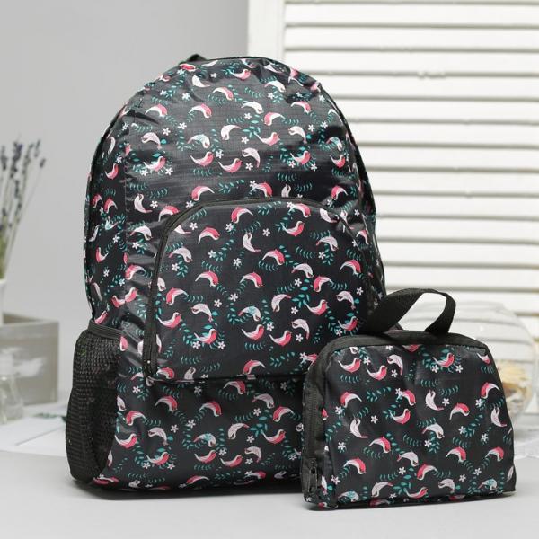 Рюкзак складной, отдел на молнии, наружный карман, 2 боковые сетки, цвет чёрный