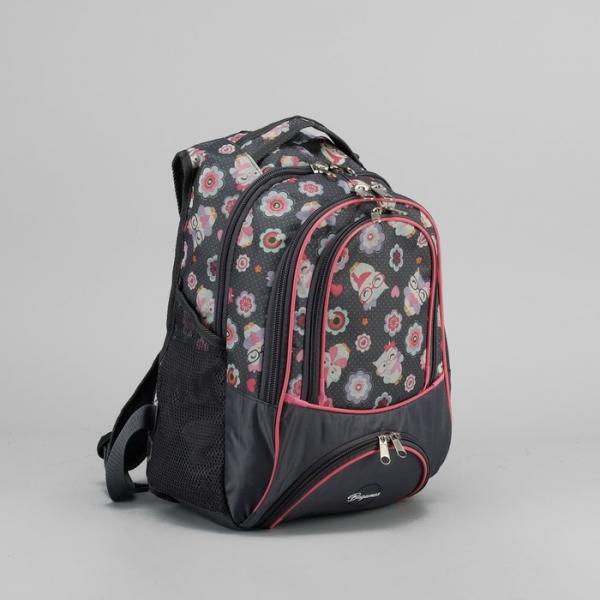 """Рюкзак школьный """"Совы в очках"""", 2 отдела, наружный карман, отдел для обуви, цвет серый"""