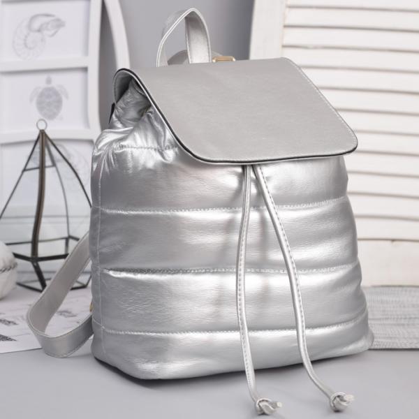 Рюкзак молодёжный, отдел на шнурке, цвет перламутр серебро
