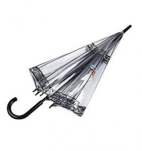 Фото Сезонные аксесуары, Дача, сад и огород Прозрачный купольный зонт