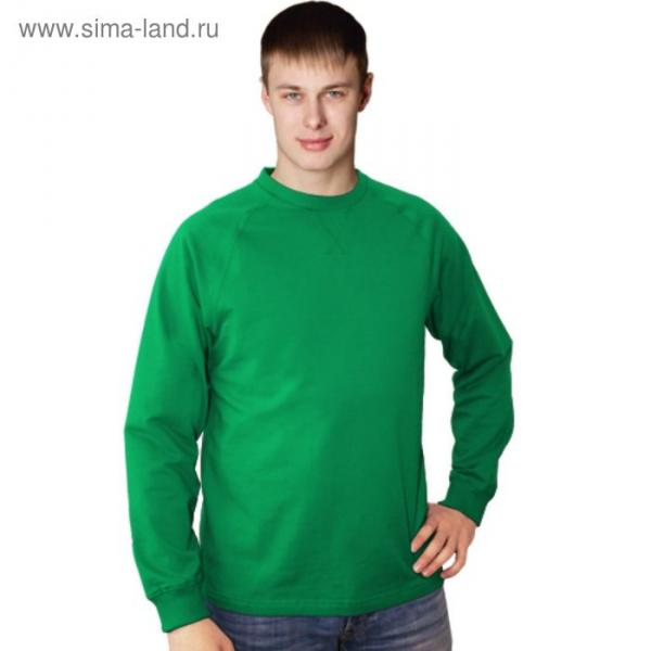 Толстовка мужская StanWork, размер 50, цвет зелёный 220 г/м