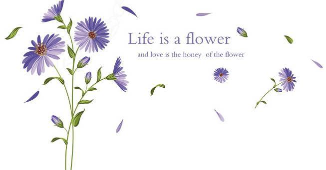 Интерьерная наклейка на стену Цветы AM9139